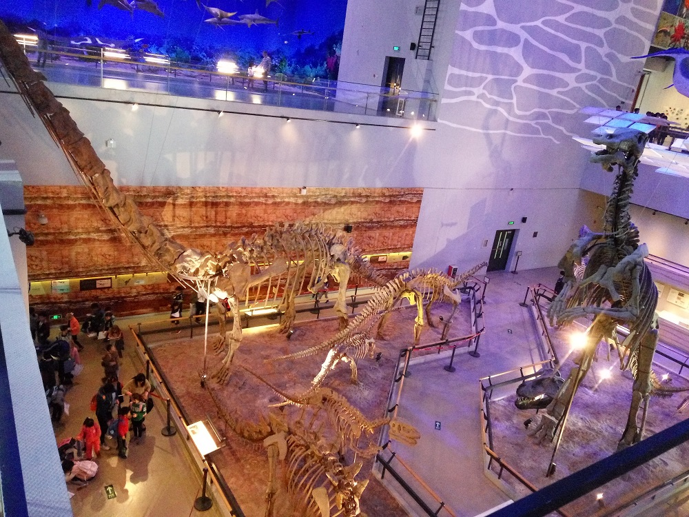 3 Guangdong Museum Dinosaur Fossils Skeletons Skmlifestyle